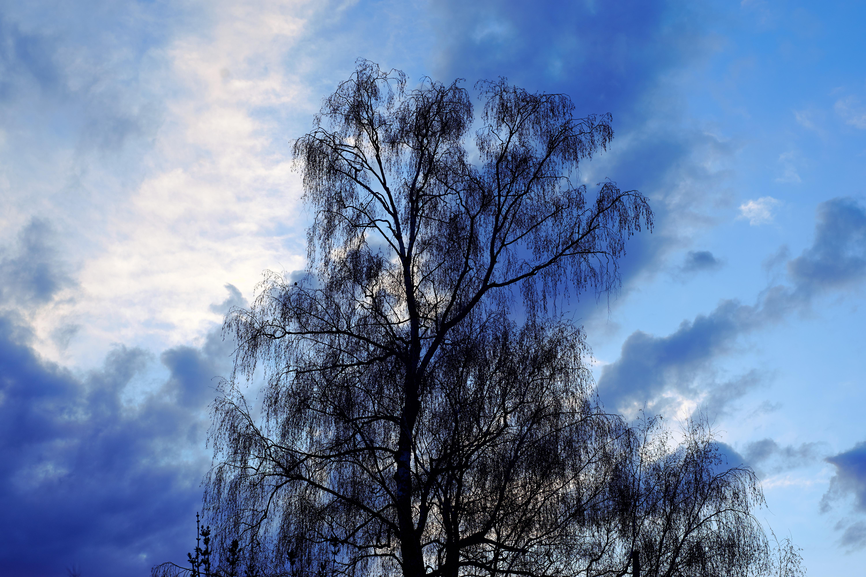 有立體感的天空
