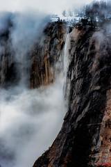 Horse Tail Yosemite