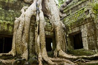 Angkor_0048