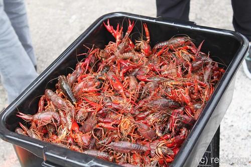 food_crawfish3