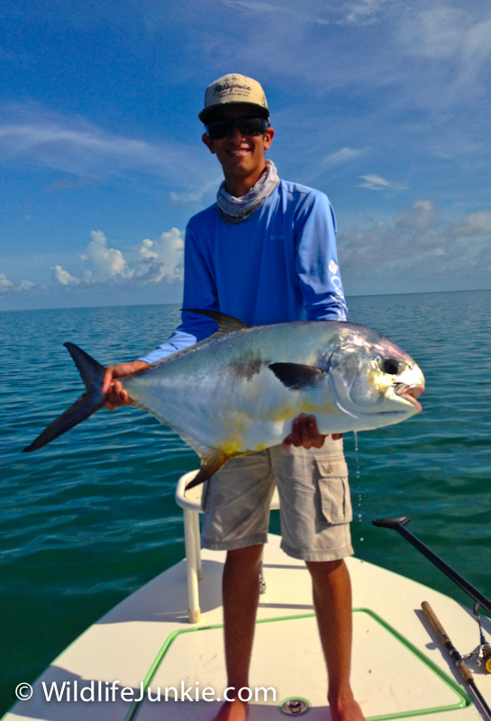 Permit on Fly Florida Keys