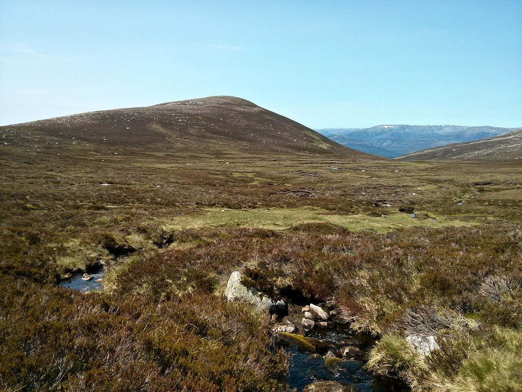 Blacksheil Burn