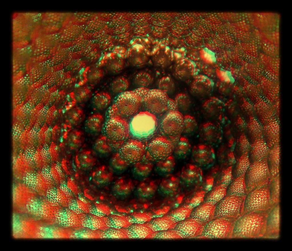 Tubular-Reflections-3aa-in-3D