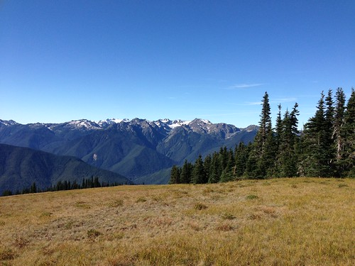 Hurricane Ridge by gmwnet
