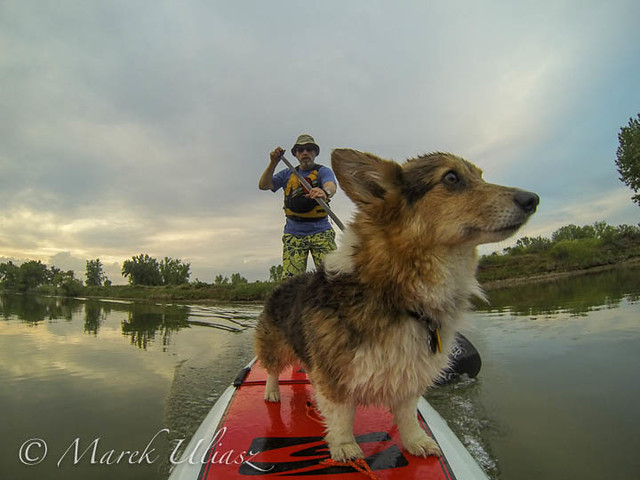 Stand up paddling with Pixel