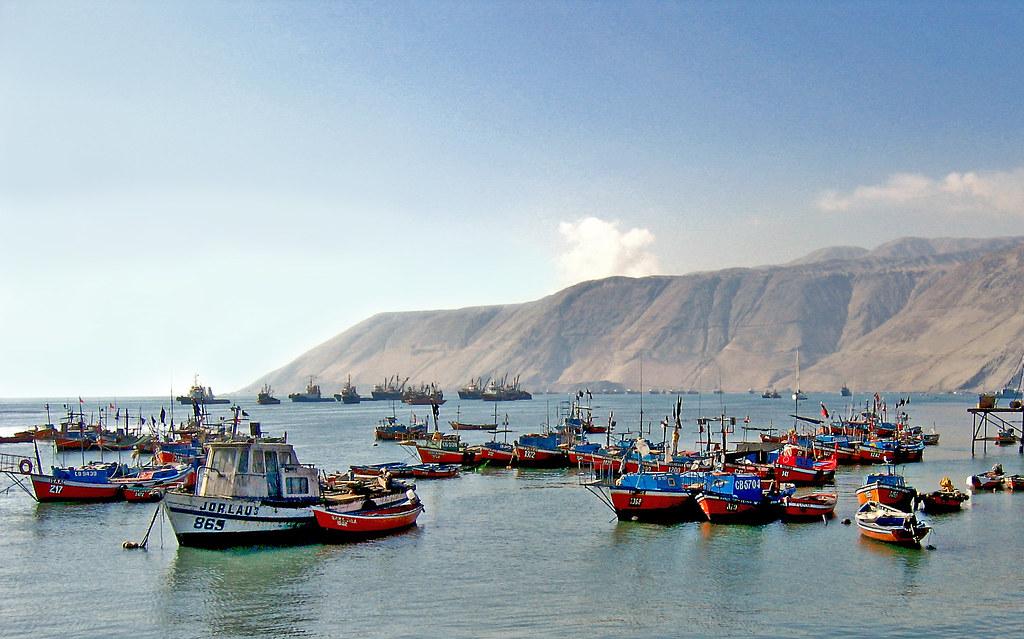 Rada de Iquique / Harbor of Iquique