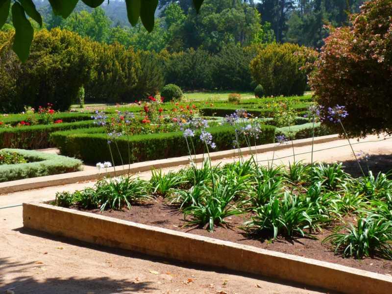 Jardineros en acci n visitando el jard n bot nico for Jardin botanico nacional