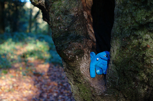 Elephpant in a tree