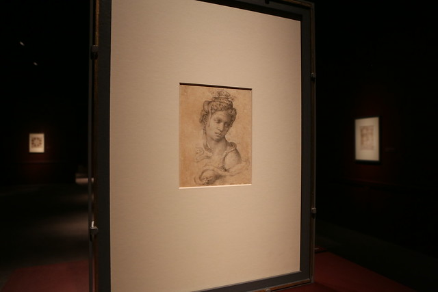 Michelangelo @ the Muscarelle