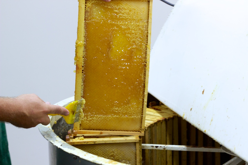 Loosening honey for centrifuge