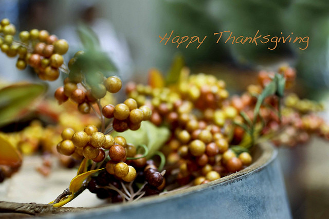 Happy Thanksgiving by Ginny Griffin, on Flickr