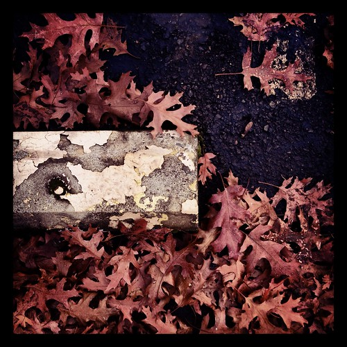 itscoldoutside by Nature Morte