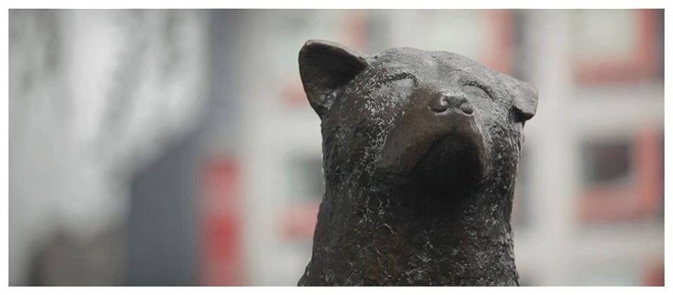 Hachiko Statue in Shibuya, Tokyo - Japan