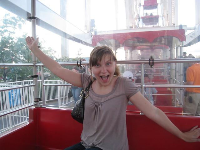 Navy Pier Ferris Wheel in Chicago, Illinois