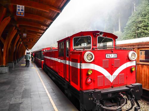 travel fog train landscape taiwan railway olympus 阿里山 alishan 嘉義 em1 火車 chiyai 1240mmf28