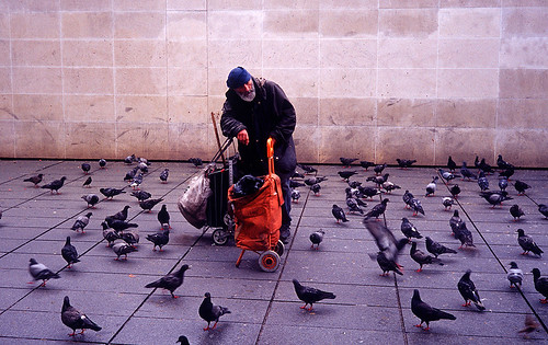 oldman and birds by mikhail_serbin