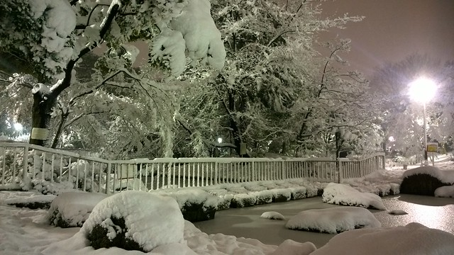 Snowy pond at night