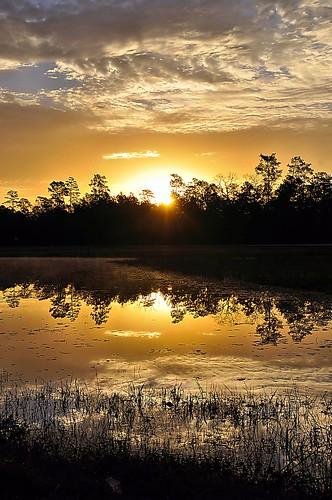 blue sunset sky orange cloud sun reflection water weather sunrise pond texas reflect