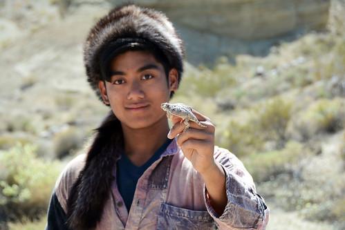 Desert horned lizard and I