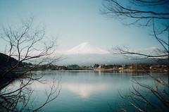 河口湖的逆富士