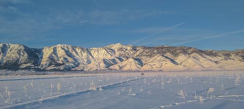 landscape minden nevada unitedstates