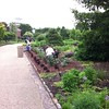 Volunteers hard at work in the Central Garden today.