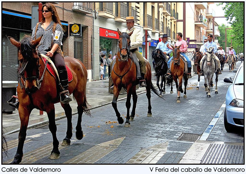 V Feria del caballo de Valdemoro