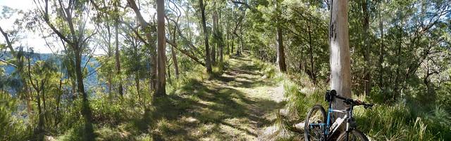 Goomburra Ridgeline Track