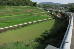 Taradake Rainbow Road