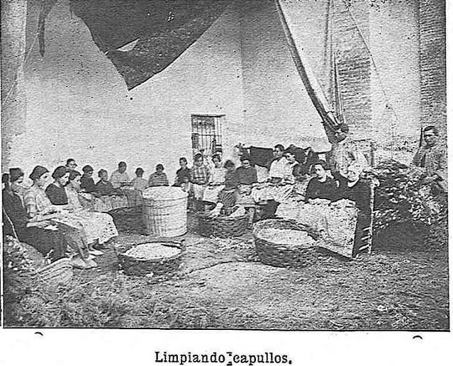 Limpiando capullos de gusanos de seda en el Monasterio de San Bernardo en Toledo en 1925.