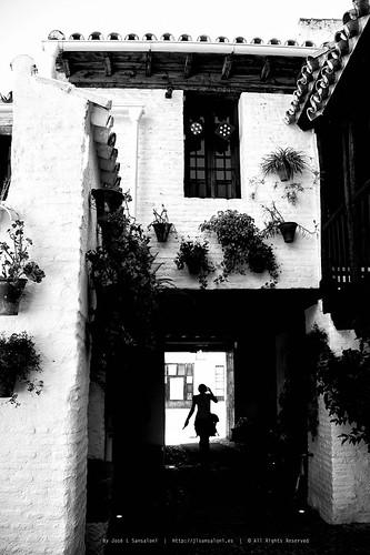 Posada del Potro Centro Flamenco Fosforito by Sansa - Factor Humano