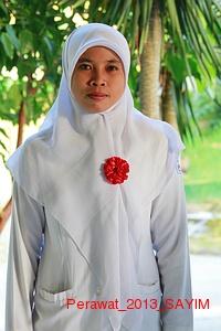Perawat_2013_SAYIM