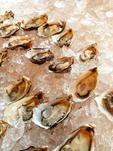 Shigoku oysters from Taylor Shellfish Farms