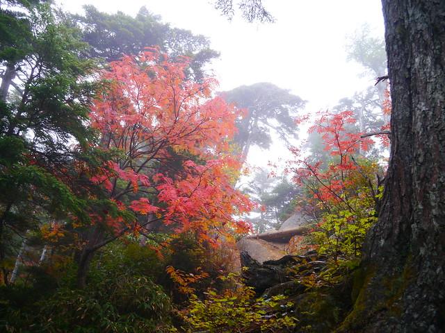 燕岳(2013.10 (40)