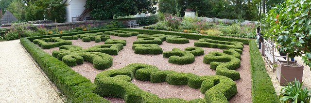 Upper Garden Hedges
