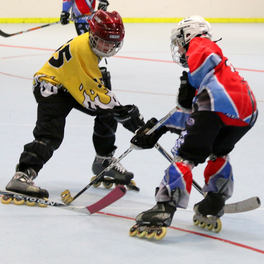 Image result for panthers inline hockey