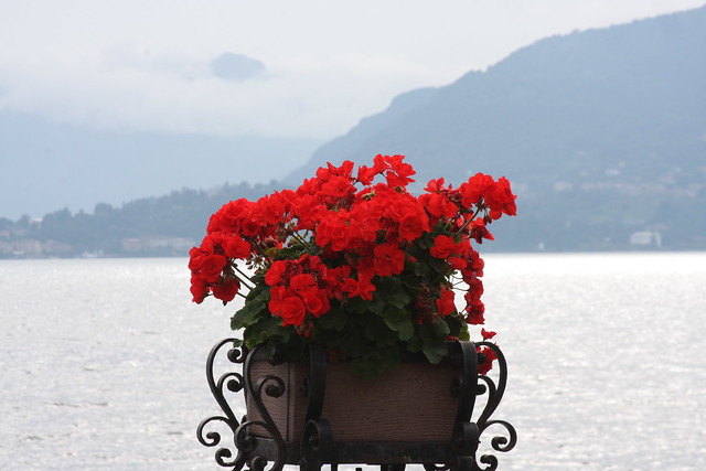 Lago di Como (72)