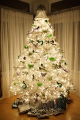 Klaus Naujok posted a photo:	Shots of our Christmas Tree. It was bit difficult because he is all white against the white background and incoming light. The night shot is a bit better.