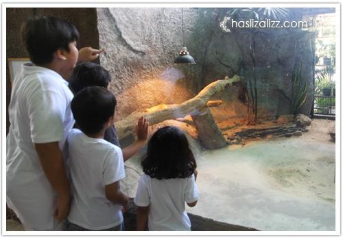 11712251786 09d9fa10b6 o BERCUTI DI HATYAI THAILAND PART 6   songkhla Zoo