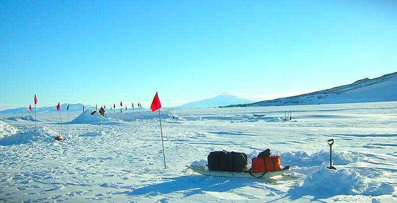 Friday Postcard: Antarctica