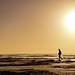 A beach in the wilderness by Tindo2 - Tim Rudman