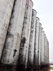 collingwood silos in spring