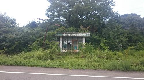 ジャングルと化した廃GS。整備された道路とは対照的な放置プレイぶり