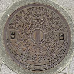 Sendai-5