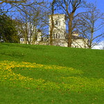 Spring at Avenham Park