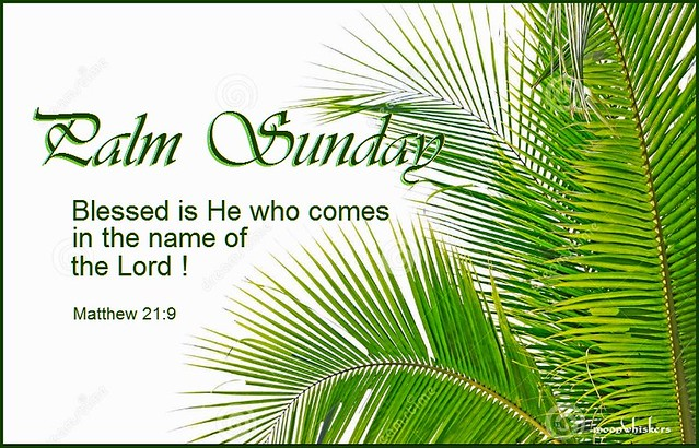 PALM SUNDAY 2017 from Flickr via Wylio