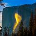 Big foot sighting at Yosemite fire fall by Samir Vasavda