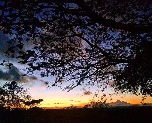 A cada fim de tarde o céu ganha novo tom... mistura de cores, mistura de pensamentos...Entre todos, um só se delineia com clareza a esperança de também contemplar um novo amanhecer. #vida #reflexoes #coisalinda #euvi #fotografei #pordosol #entardecer