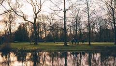 View from Vondelpark