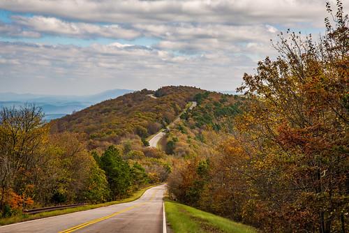 fallfoilage landscape road